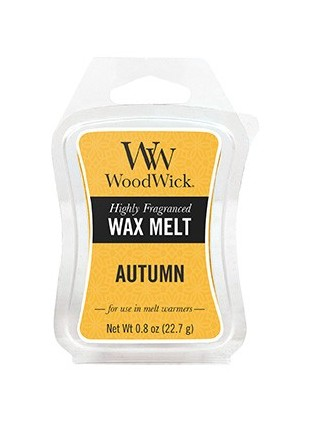 CANDLE AUTUMN MINI WAX MELT