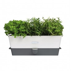 Cole & Mason Self Watering Herb Keeper Triple