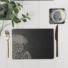 Just Slate Set 2 Contemporary Thistle Place Mats