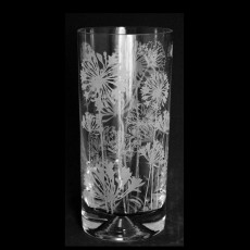 HIGHBALL GLASSES AGAPANTHUS DESIGN PAIR