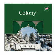 Wax Lyrical Tealights Winter Spruce Box 9