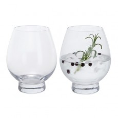 Dartington Gin Connoisseur Tumbler Pair